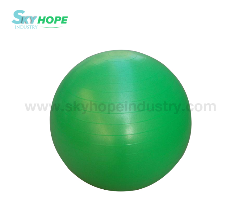 Gym Ball/Yoga Ball