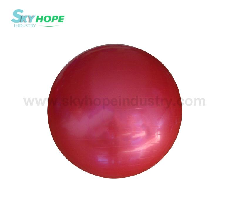 Gym Ball/Yoga Ball